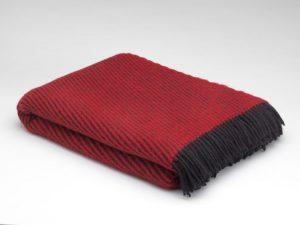 McNutt Z Red Blanket